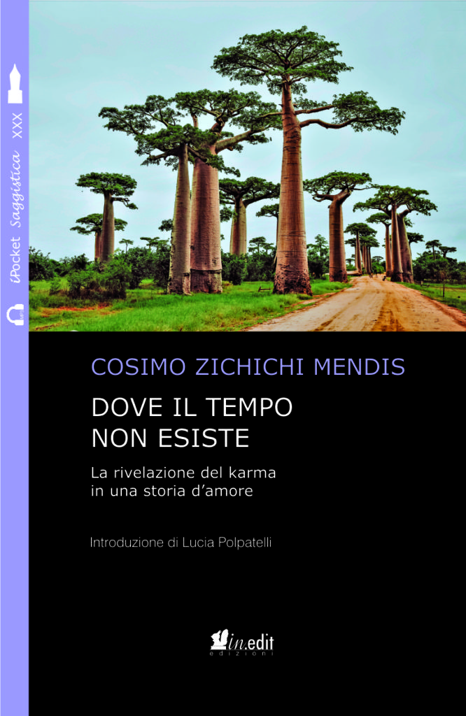 Dove il tempo non esiste: amore e karma, vite precedenti e formazione in regressioni - book on karmic love & past lives