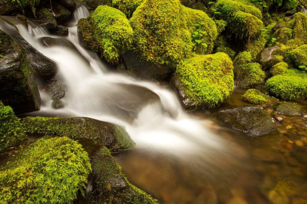flow of life meditation